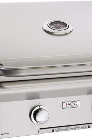 AOG American Outdoor Grill L-Series 24-Inch 2-Burner Built-in Propane Gas Grill - 24PBL-00SP