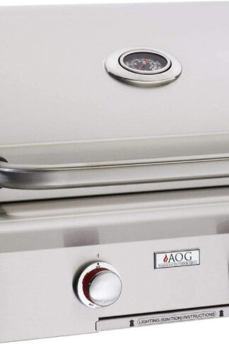AOG American Outdoor Grill T-Series 24-Inch 2-Burner Built-in Natural Gas Grill with Rotisserie - 24NBT
